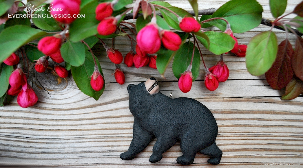 Black Bear on wood with crabapple blossoms.